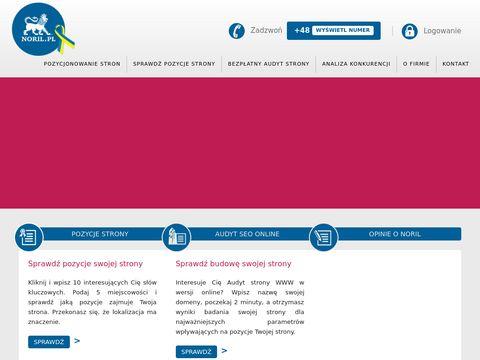 Noril.pl pozycjonowanie stron internetowych